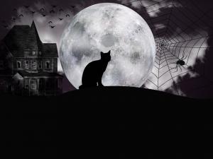 halloween-3696571_1920