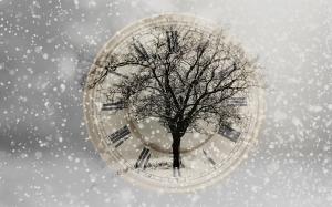snow-2910676_1920