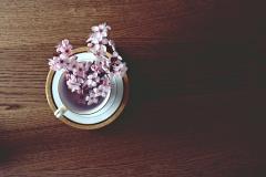 spring-2174751_1920